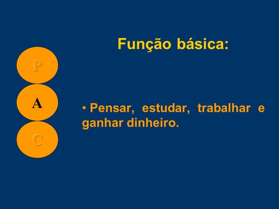 Função básica: Pensar, estudar, trabalhar e ganhar dinheiro.