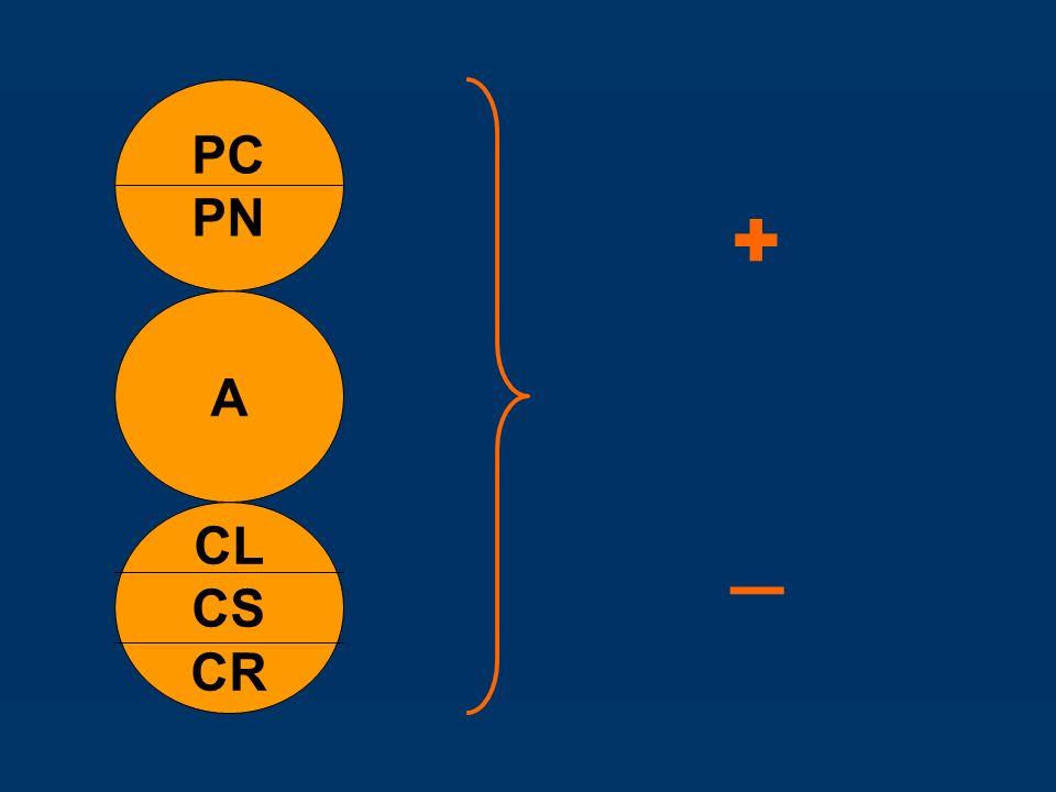 PC PN + _ A CL CS CR
