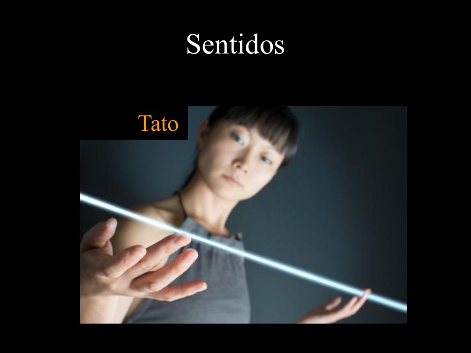Sentidos Tato