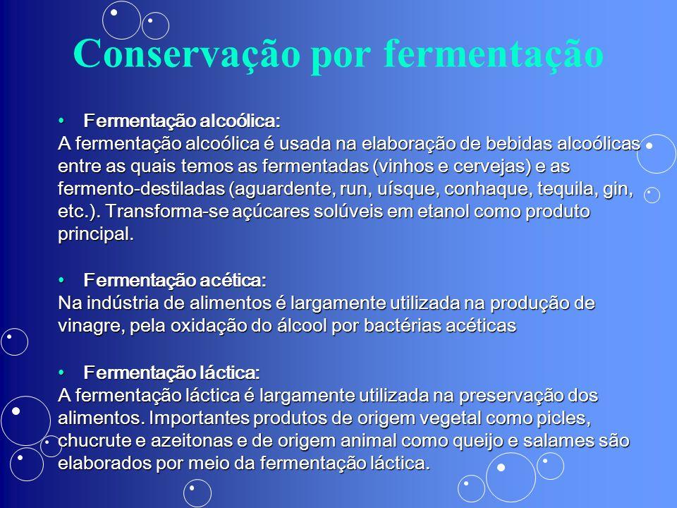 Conservação por fermentação