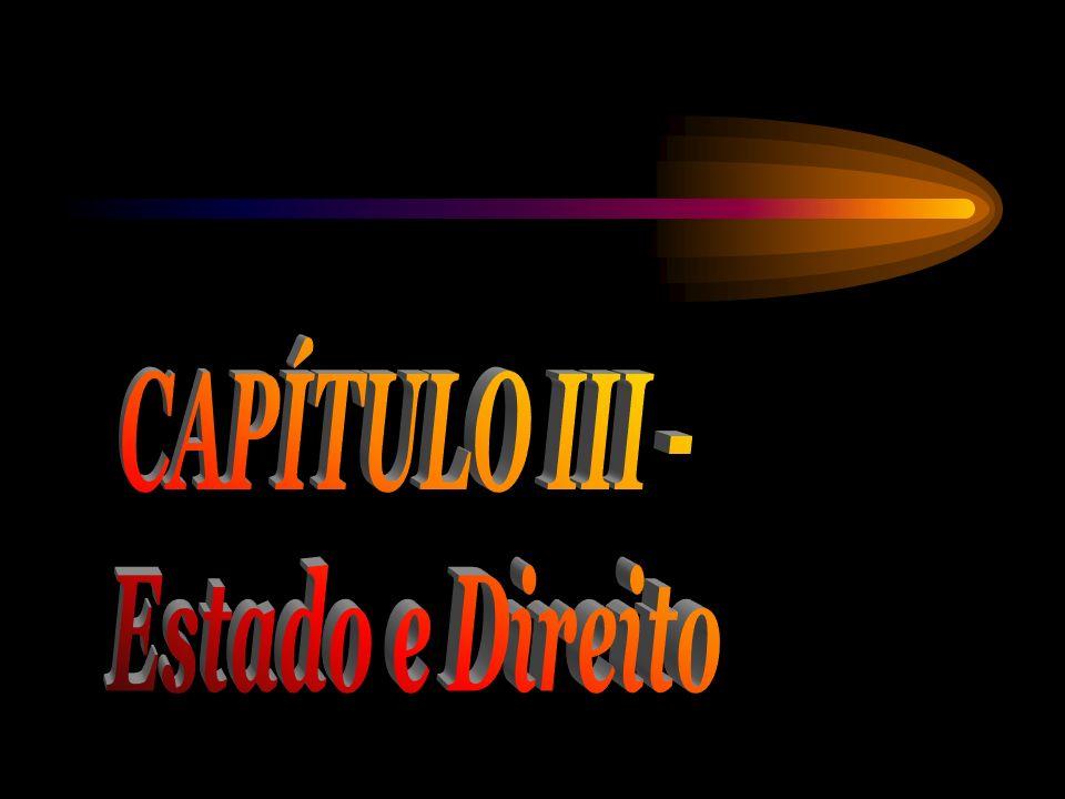 CAPÍTULO III - Estado e Direito