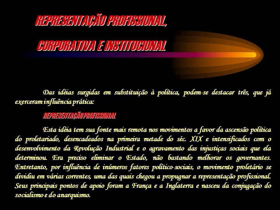 REPRESENTAÇÃO PROFISSIONAL, CORPORATIVA E INSTITUCIONAL