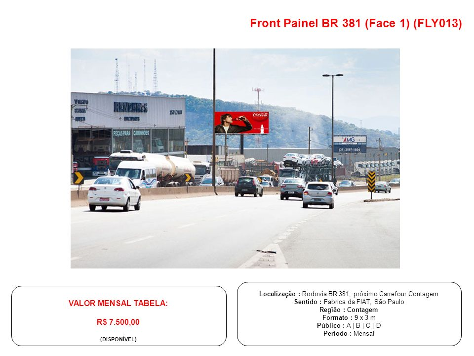 Front Painel BR 381 (Face 1) (FLY013)
