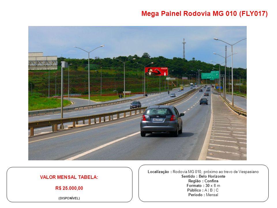 Mega Painel Rodovia MG 010 (FLY017)