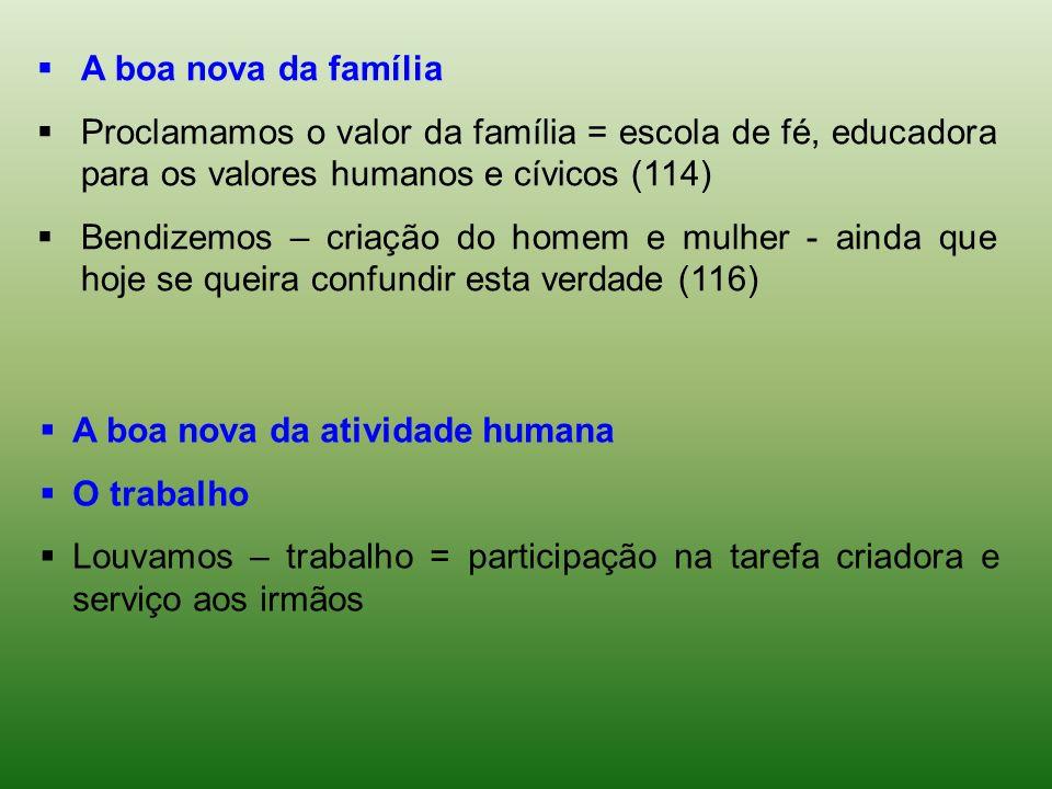 A boa nova da famíliaProclamamos o valor da família = escola de fé, educadora para os valores humanos e cívicos (114)