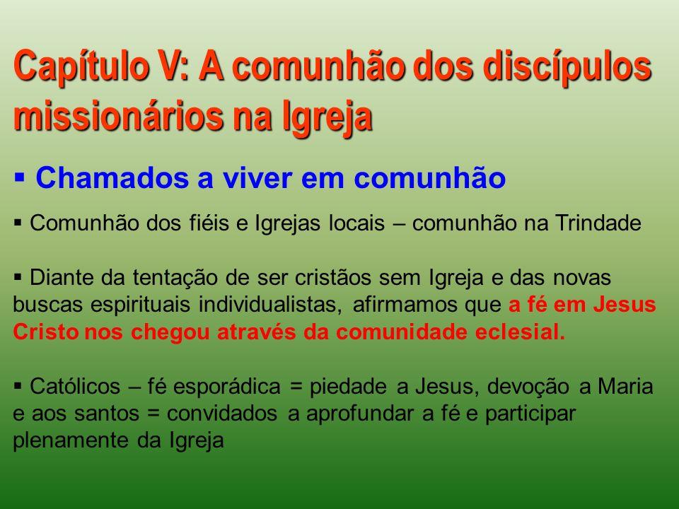 Capítulo V: A comunhão dos discípulos missionários na Igreja