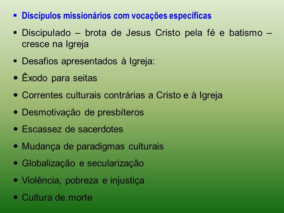 Discípulos missionários com vocações específicas