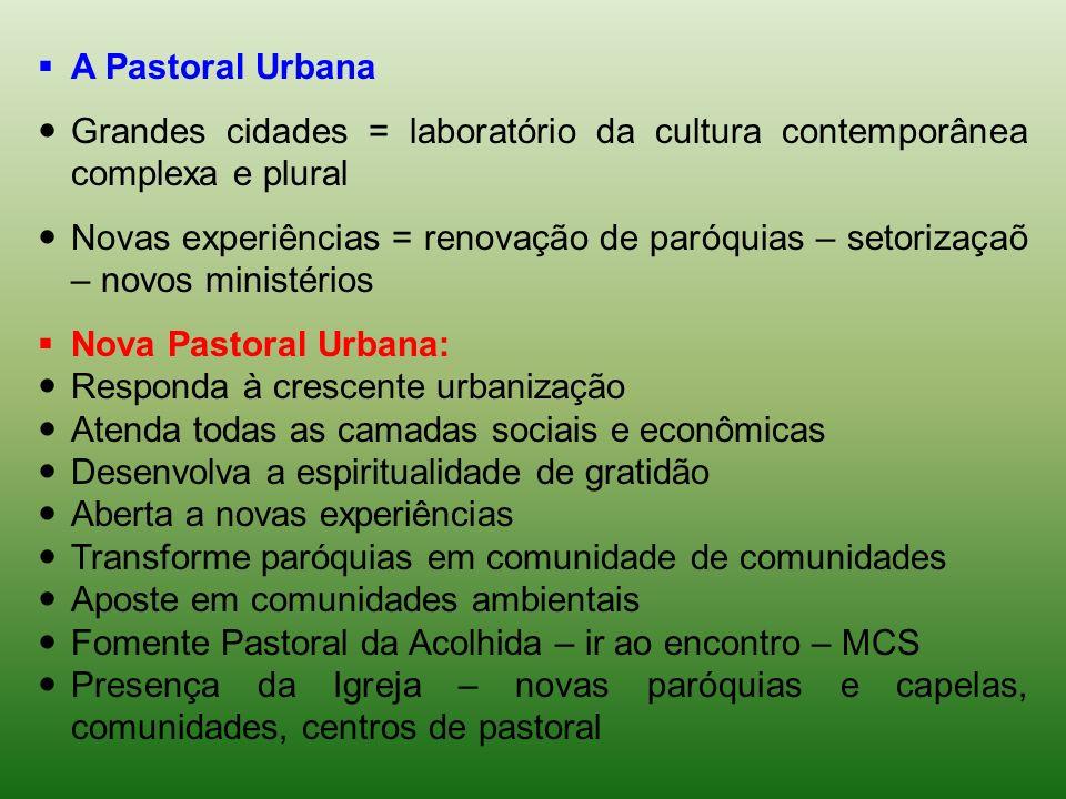 A Pastoral Urbana Grandes cidades = laboratório da cultura contemporânea complexa e plural.