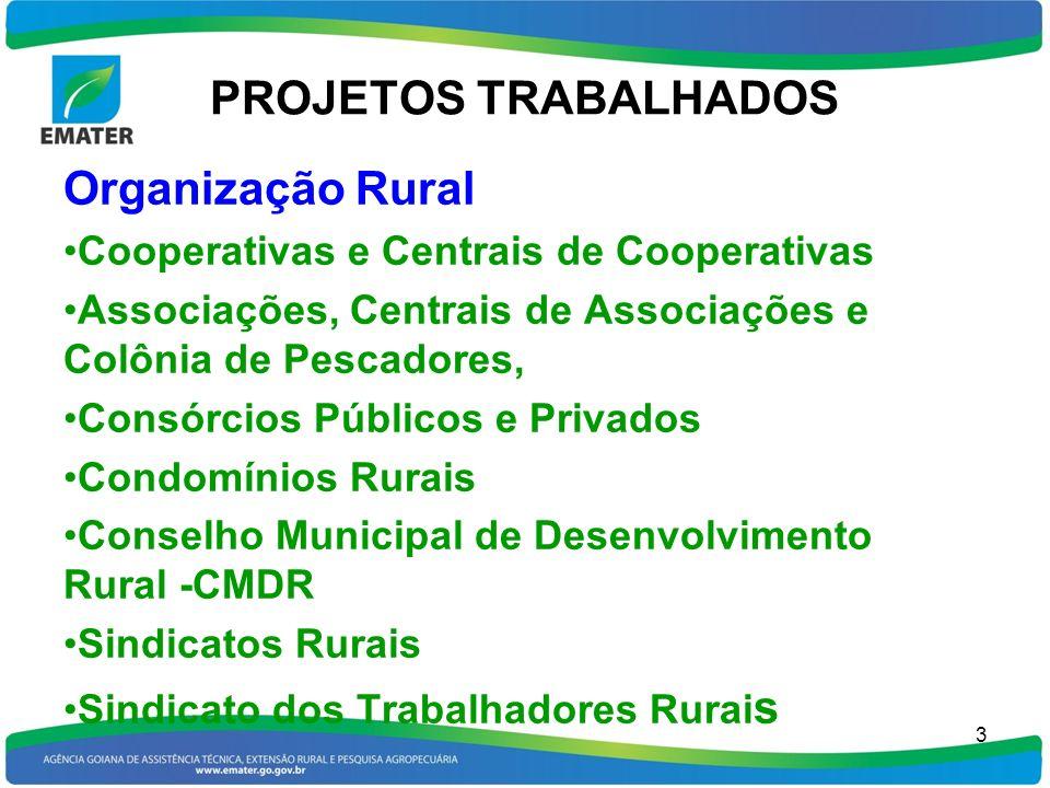 PROJETOS TRABALHADOS Organização Rural