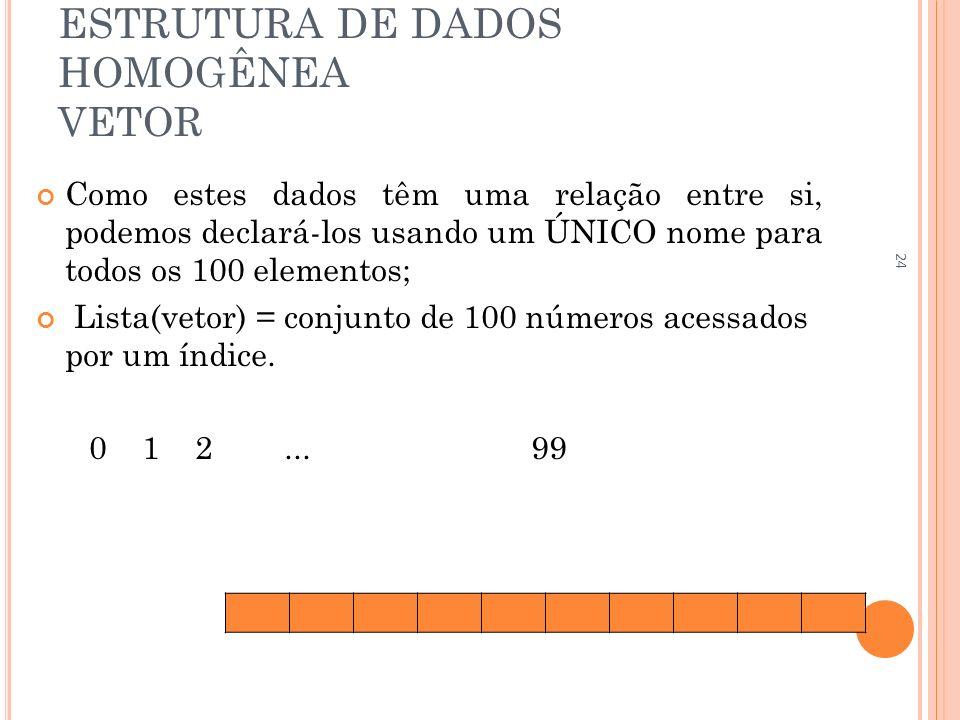 ESTRUTURA DE DADOS HOMOGÊNEA VETOR