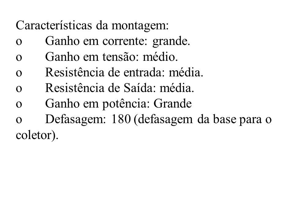 Características da montagem: