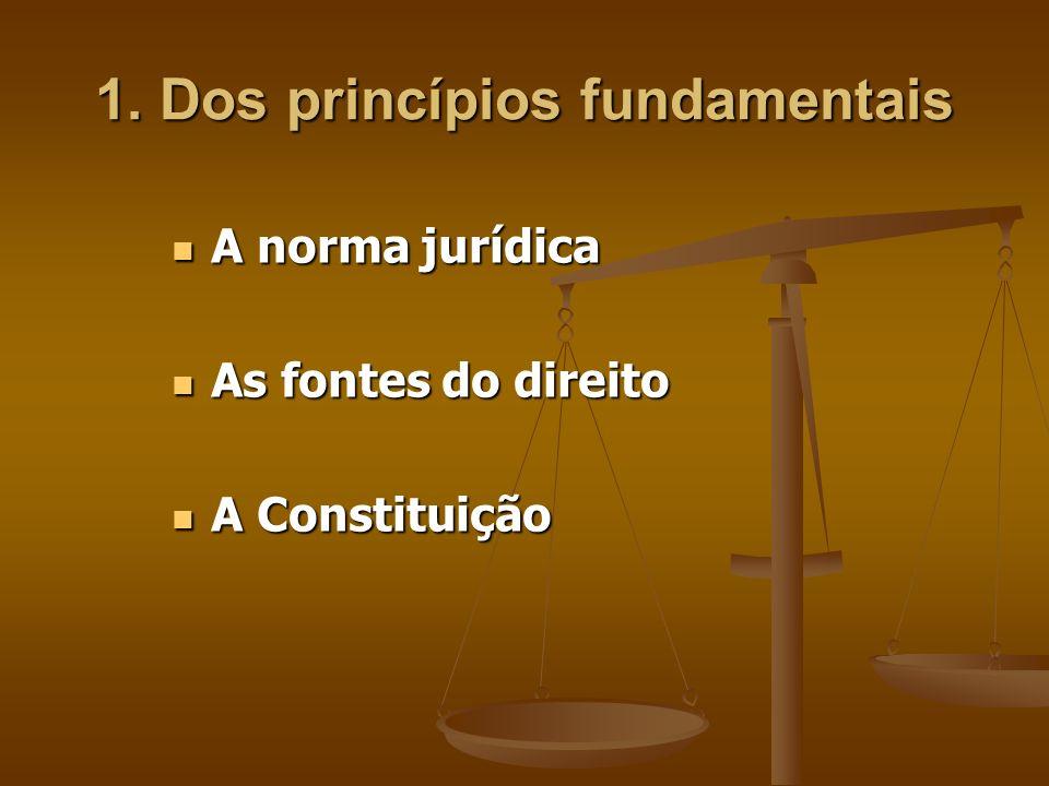 1. Dos princípios fundamentais