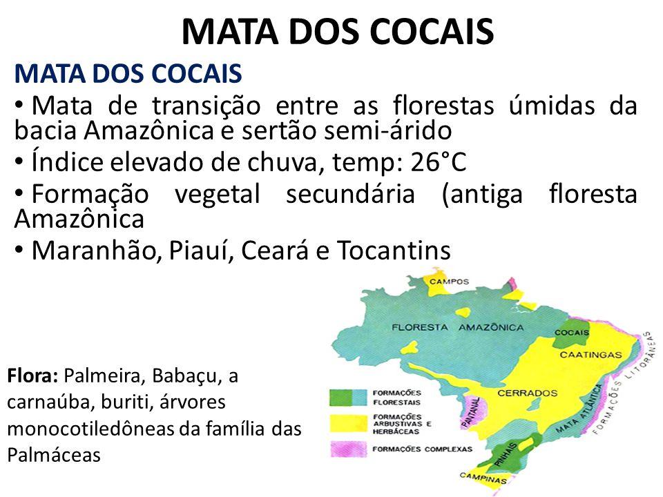 MATA DOS COCAIS MATA DOS COCAIS