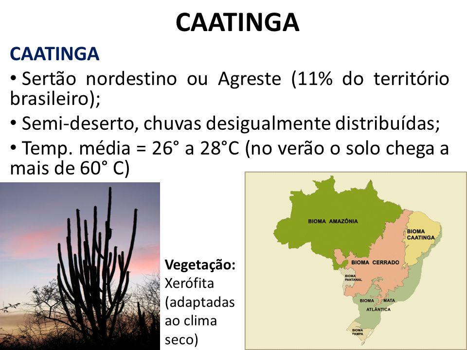 CAATINGA CAATINGA. Sertão nordestino ou Agreste (11% do território brasileiro); Semi-deserto, chuvas desigualmente distribuídas;