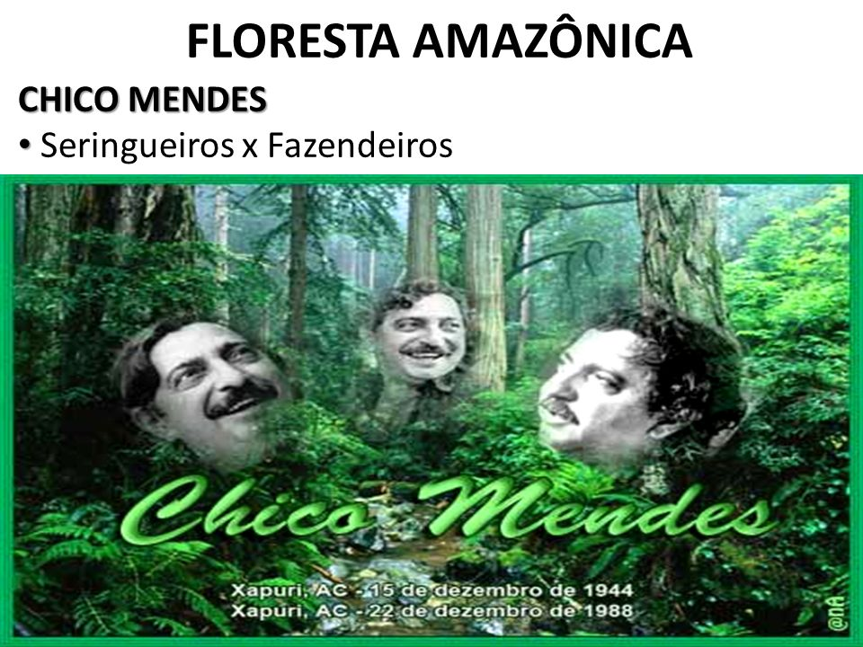 FLORESTA AMAZÔNICA CHICO MENDES Seringueiros x Fazendeiros