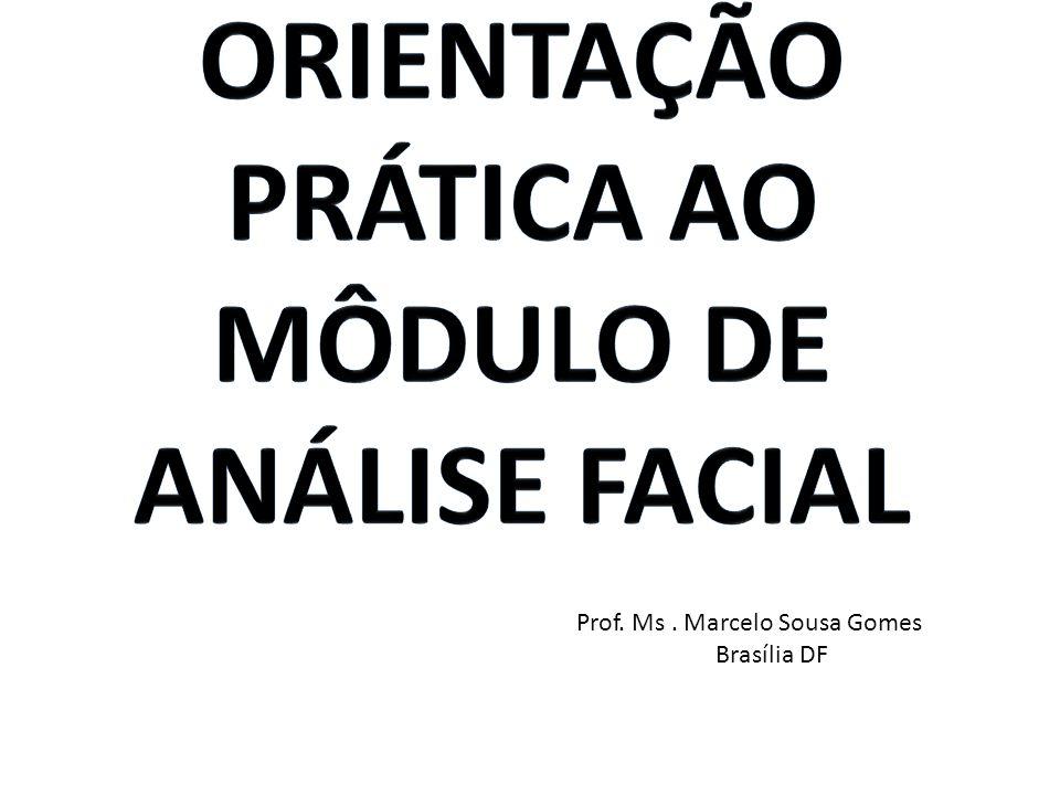 Orientação Prática ao Môdulo de análise facial