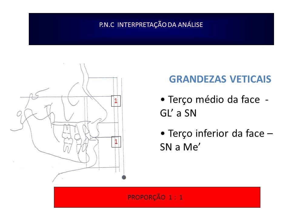 P.N.C INTERPRETAÇÃO DA ANÁLISE