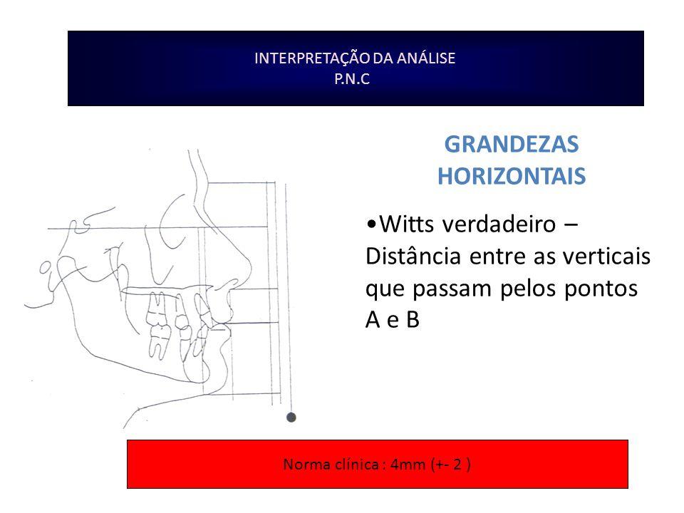 GRANDEZAS HORIZONTAIS