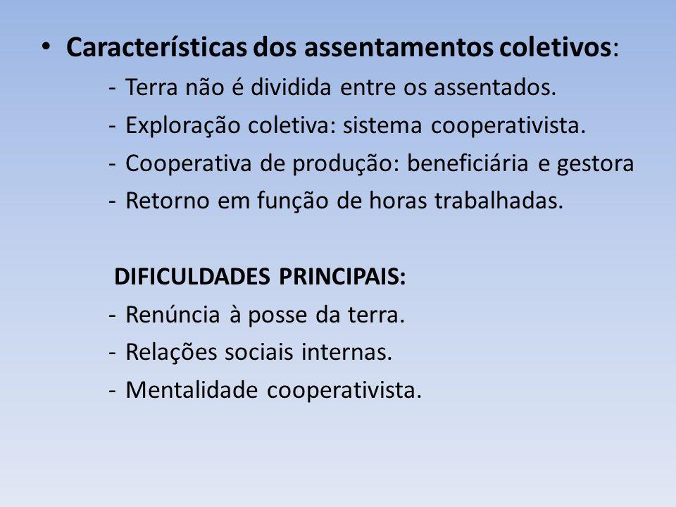 Características dos assentamentos coletivos: