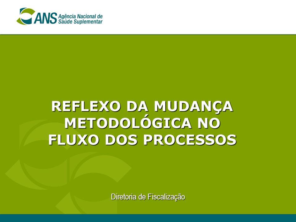 REFLEXO DA MUDANÇA METODOLÓGICA NO FLUXO DOS PROCESSOS