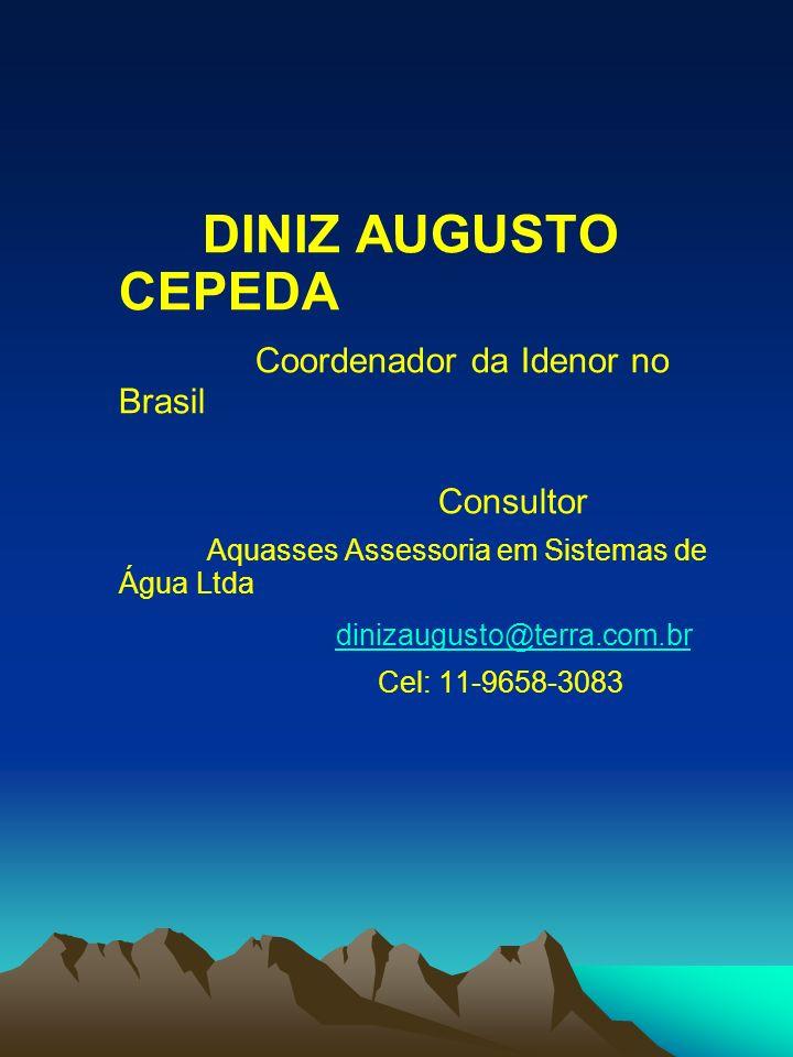 Coordenador da Idenor no Brasil
