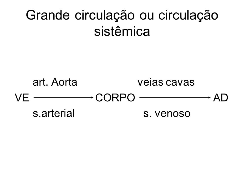 Grande circulação ou circulação sistêmica