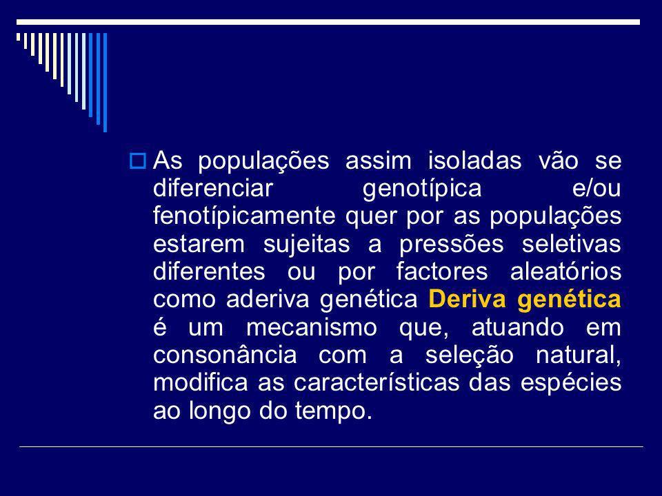 As populações assim isoladas vão se diferenciar genotípica e/ou fenotípicamente quer por as populações estarem sujeitas a pressões seletivas diferentes ou por factores aleatórios como aderiva genética Deriva genética é um mecanismo que, atuando em consonância com a seleção natural, modifica as características das espécies ao longo do tempo.