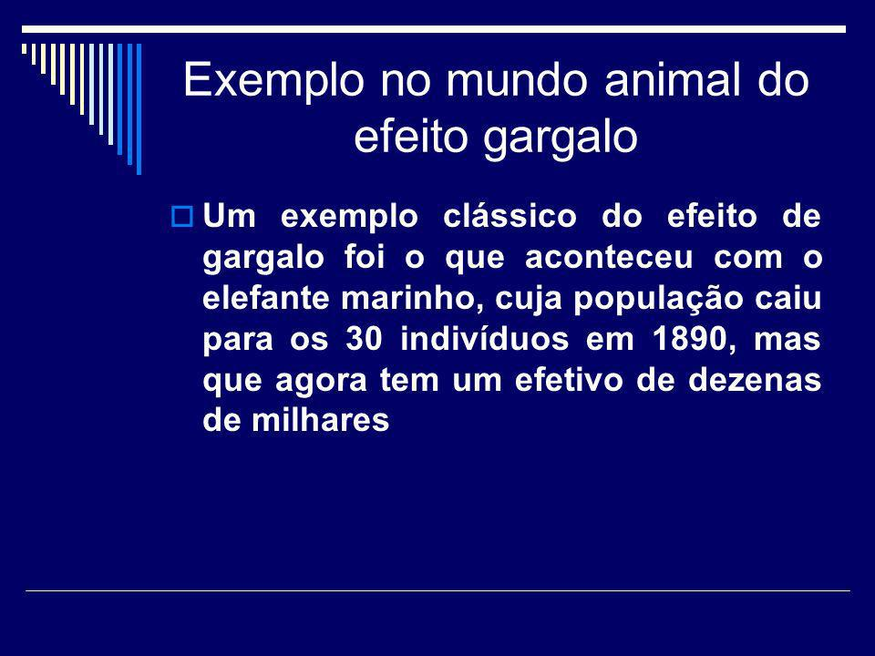 Exemplo no mundo animal do efeito gargalo