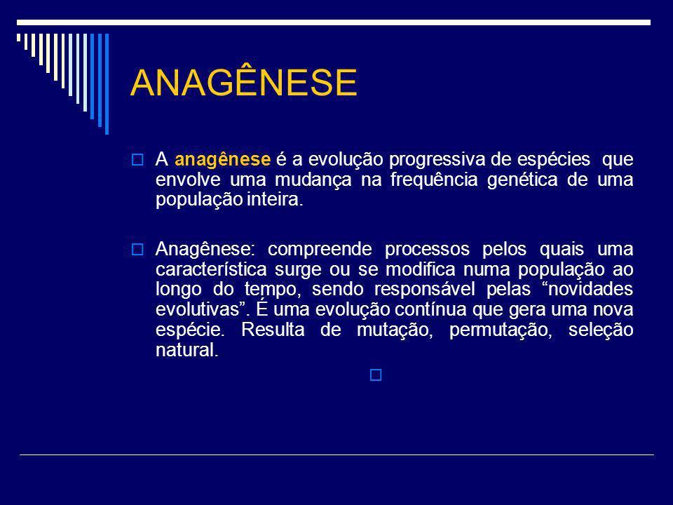 ANAGÊNESE A anagênese é a evolução progressiva de espécies que envolve uma mudança na frequência genética de uma população inteira.