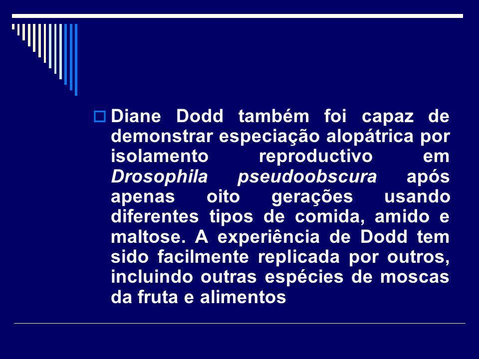 Diane Dodd também foi capaz de demonstrar especiação alopátrica por isolamento reproductivo em Drosophila pseudoobscura após apenas oito gerações usando diferentes tipos de comida, amido e maltose.
