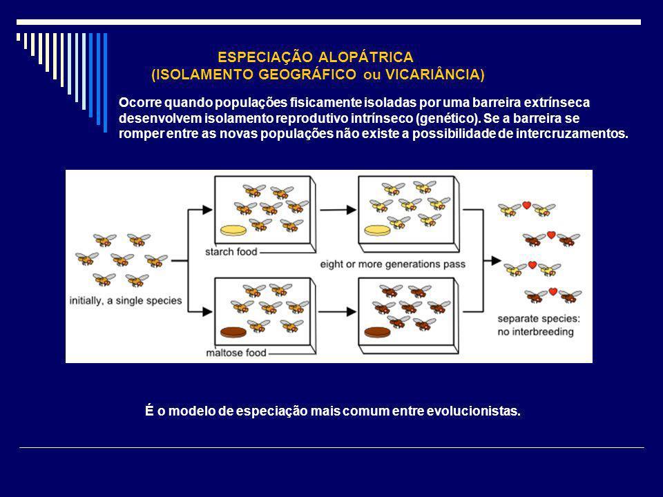 ESPECIAÇÃO ALOPÁTRICA (ISOLAMENTO GEOGRÁFICO ou VICARIÂNCIA)