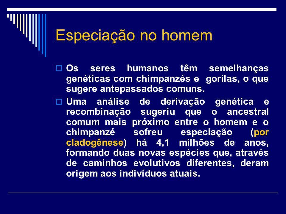 Especiação no homem Os seres humanos têm semelhanças genéticas com chimpanzés e gorilas, o que sugere antepassados comuns.