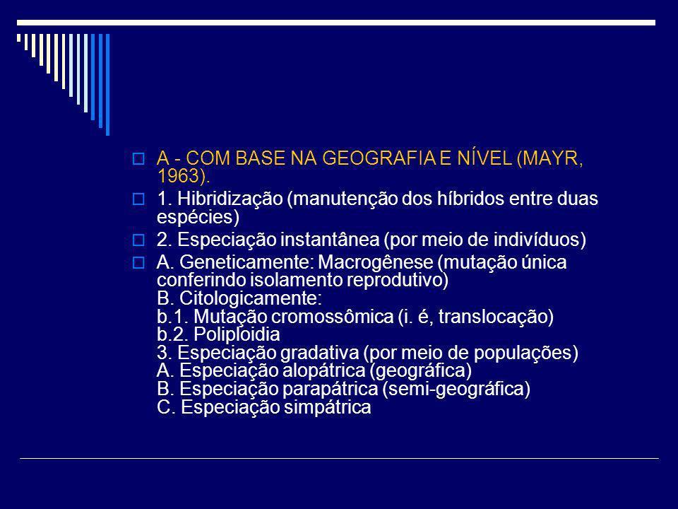 A - COM BASE NA GEOGRAFIA E NÍVEL (MAYR, 1963).