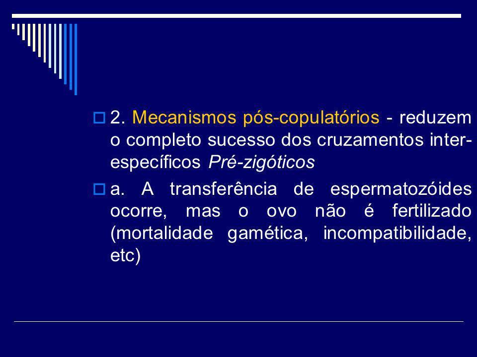 2. Mecanismos pós-copulatórios - reduzem o completo sucesso dos cruzamentos inter-específicos Pré-zigóticos
