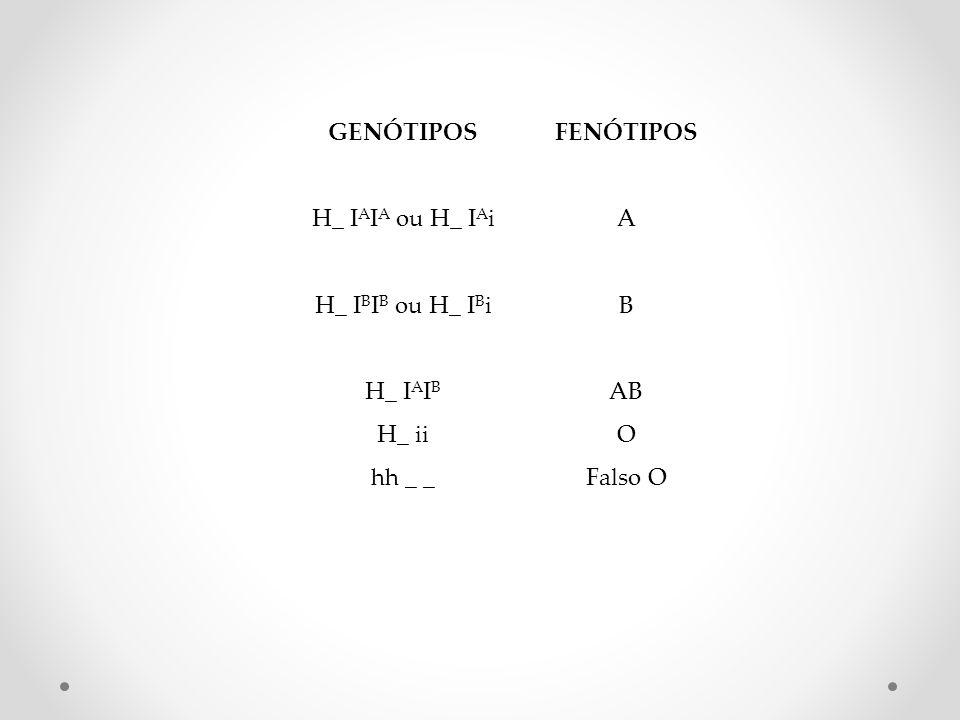 GENÓTIPOS FENÓTIPOS H_ IAIA ou H_ IAi A H_ IBIB ou H_ IBi B H_ IAIB AB H_ ii O hh _ _ Falso O