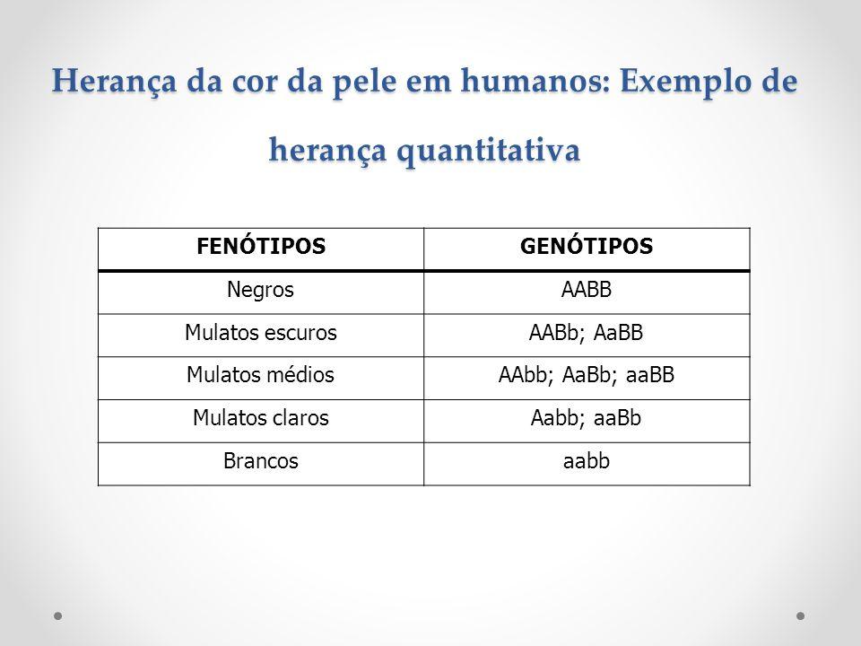 Herança da cor da pele em humanos: Exemplo de herança quantitativa