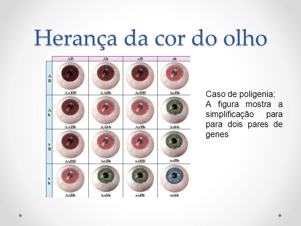 Herança da cor do olho Caso de poligenia;