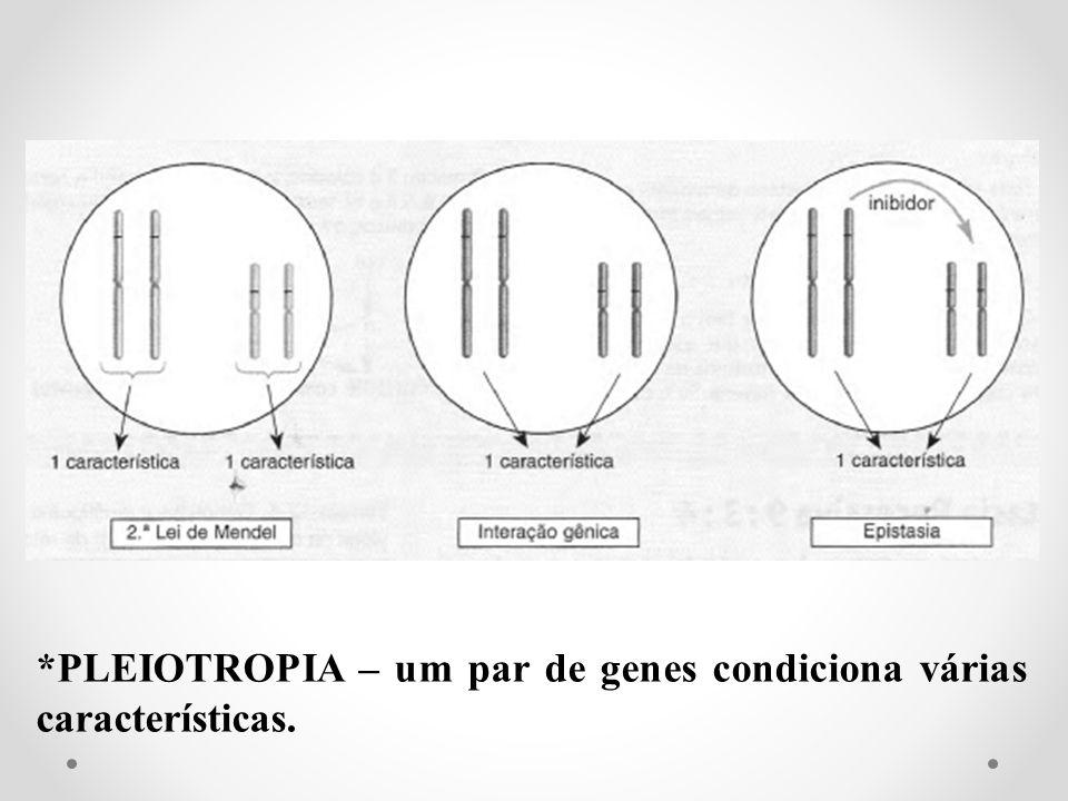 *PLEIOTROPIA – um par de genes condiciona várias características.