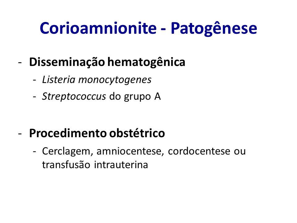 Corioamnionite - Patogênese