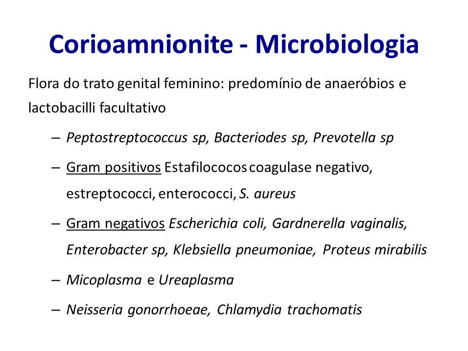 Corioamnionite - Microbiologia