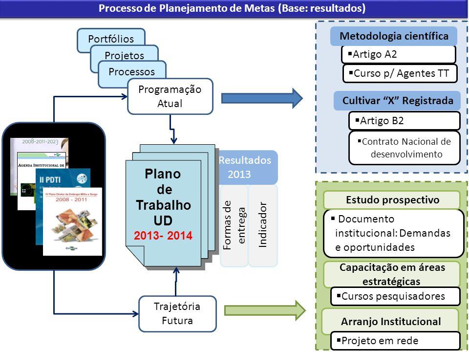 Processo de Planejamento de Metas (Base: resultados)