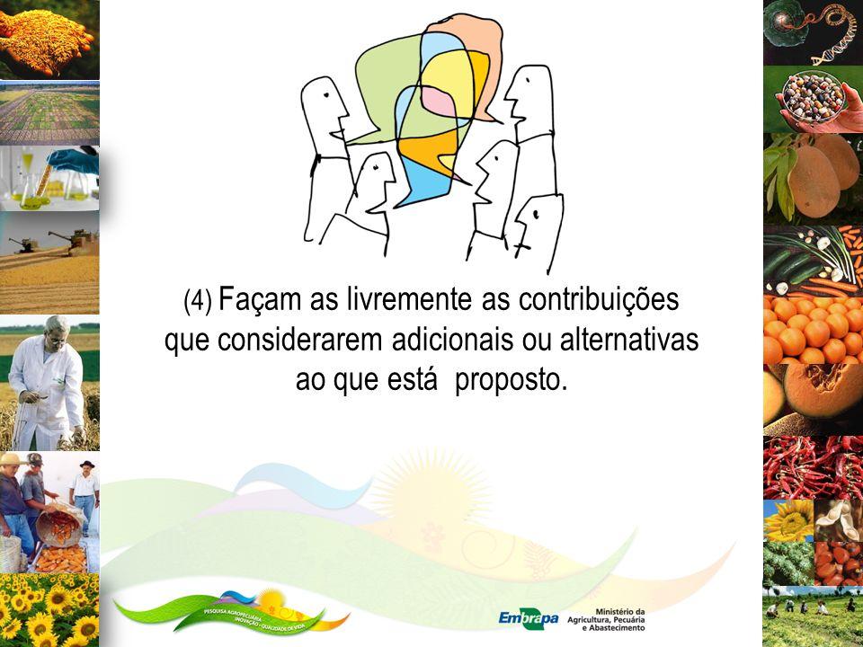 (4) Façam as livremente as contribuições que considerarem adicionais ou alternativas ao que está proposto.