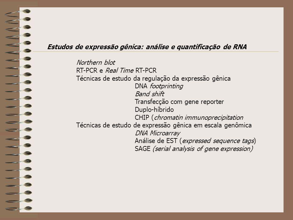 Estudos de expressão gênica: análise e quantificação de RNA