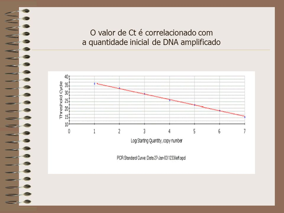 O valor de Ct é correlacionado com a quantidade inicial de DNA amplificado