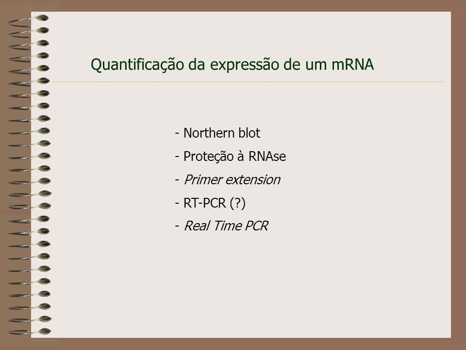 Quantificação da expressão de um mRNA
