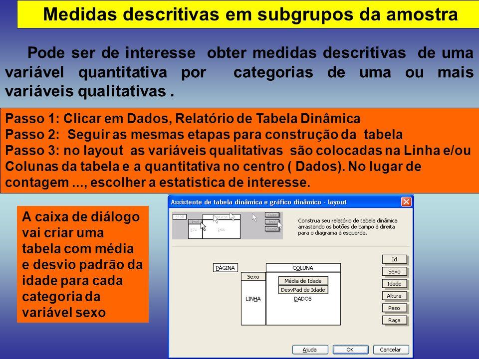 Medidas descritivas em subgrupos da amostra