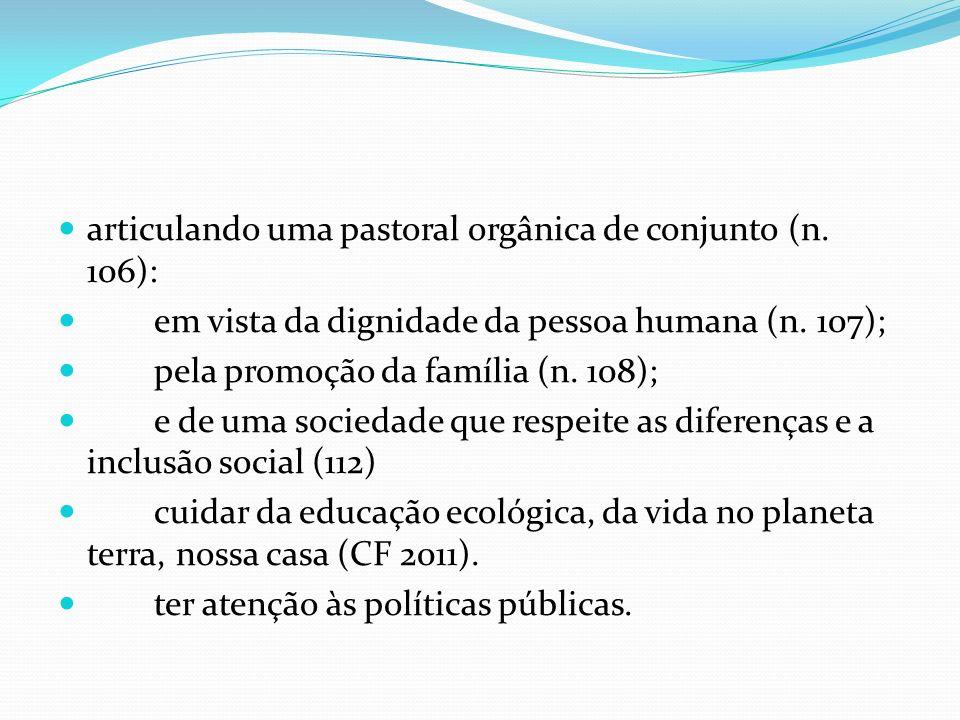 articulando uma pastoral orgânica de conjunto (n. 106):
