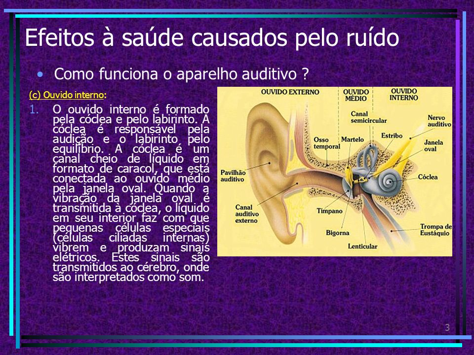 Efeitos à saúde causados pelo ruído