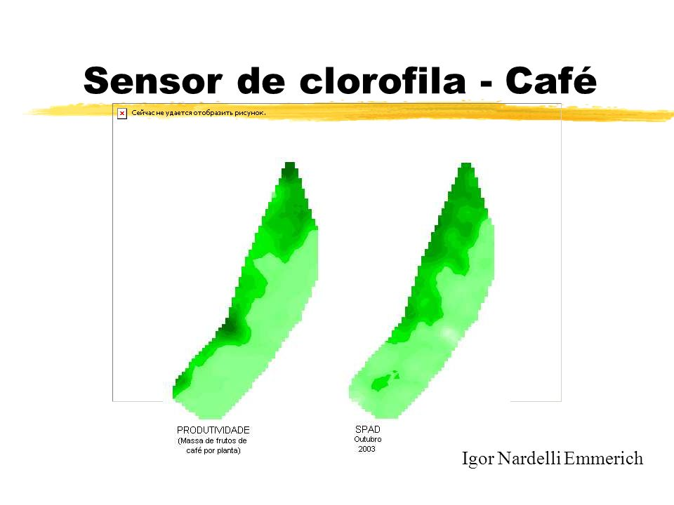 Sensor de clorofila - Café