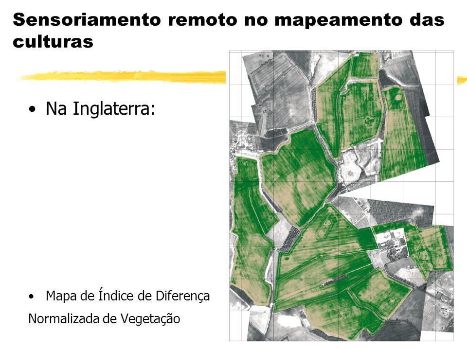 Sensoriamento remoto no mapeamento das culturas